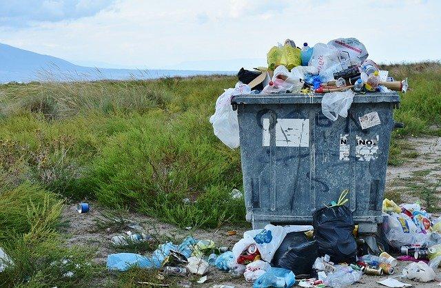 odpadky v kontejneru.jpg