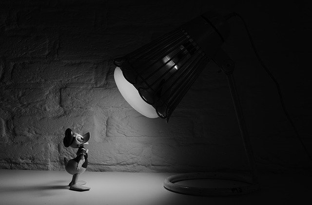 donald pod žárovkou